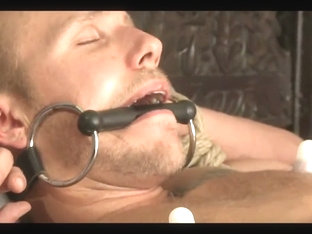 Southern Bi Stud Bound and Edged