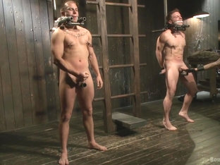 BoundGods : A pain slut and a newcomer Live Show
