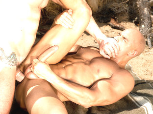 Total Exposure 2 - Raging Stallion