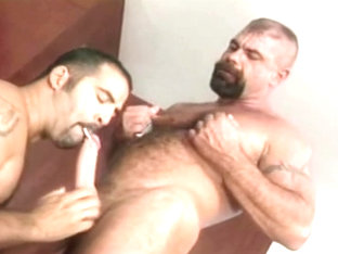 Best adult movie homosexual Muscle will enslaves your mind