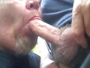Redneck Bear Sucking Cocks in the Woods
