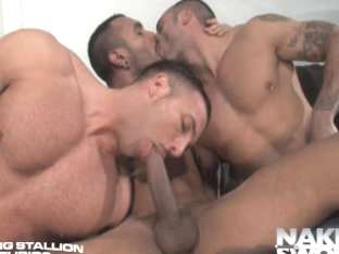 Sexo En Barcelona - Raging Stallion