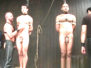 Gay slaves get electro therapy from part5