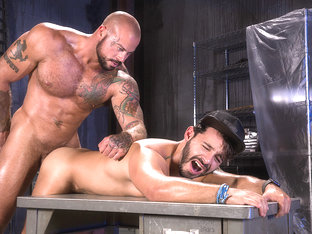 Wasteland - Raging Stallion
